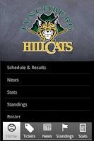 Screenshot of Lynchburg Hillcats