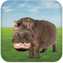 Talking Hippo icon