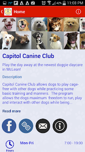 Capitol Canine Club- screenshot thumbnail