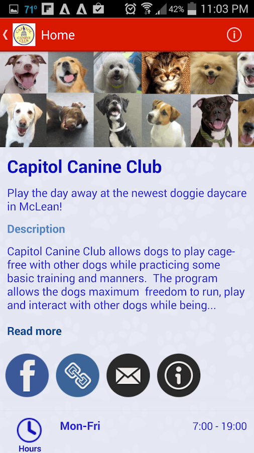 Capitol Canine Club- screenshot
