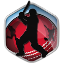 Box Cricket International 2016 icon
