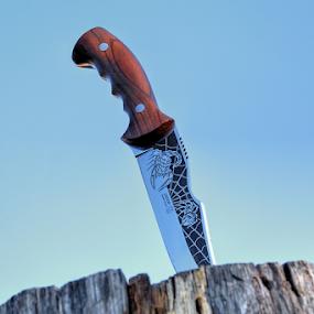 Kizlyar Scorpion by Dalibor Jud - Artistic Objects Industrial Objects ( kizlyar, u, drvu, wood, scorpion, nož, in, zabijen, drvo, knife,  )