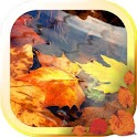Autumn Leaf 3d live wallpaper icon