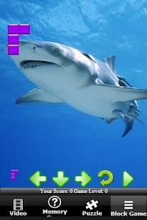 Shark Revenge Attack 解謎 App-癮科技App