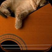 Kit Cat Purr