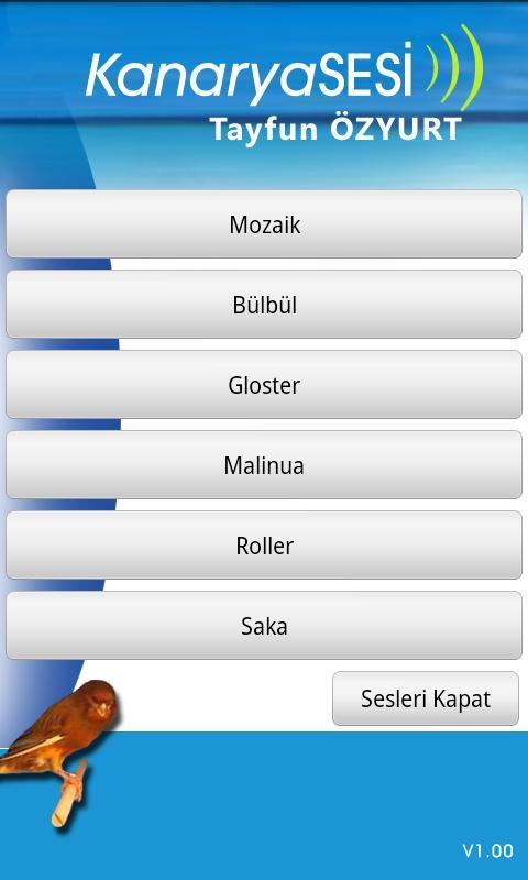 Kanaryasesi- screenshot