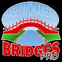 Hashi Bridges PRO logo