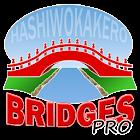 Hashi Bridges PRO icon