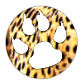 Wild Cheetah Theme