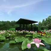 Lotus Pond 360°Trial