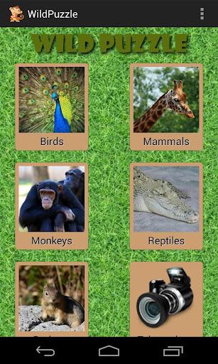 野生动物拼图