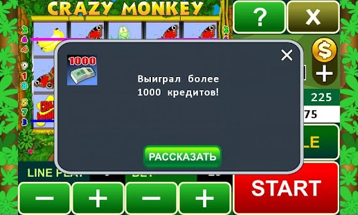 Crazy Monkey slot machine - screenshot thumbnail