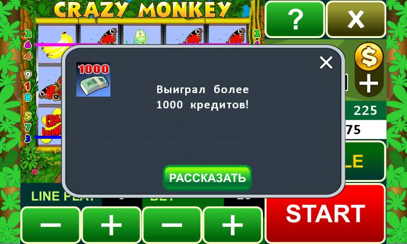 Crazy Monkey slot machine - screenshot