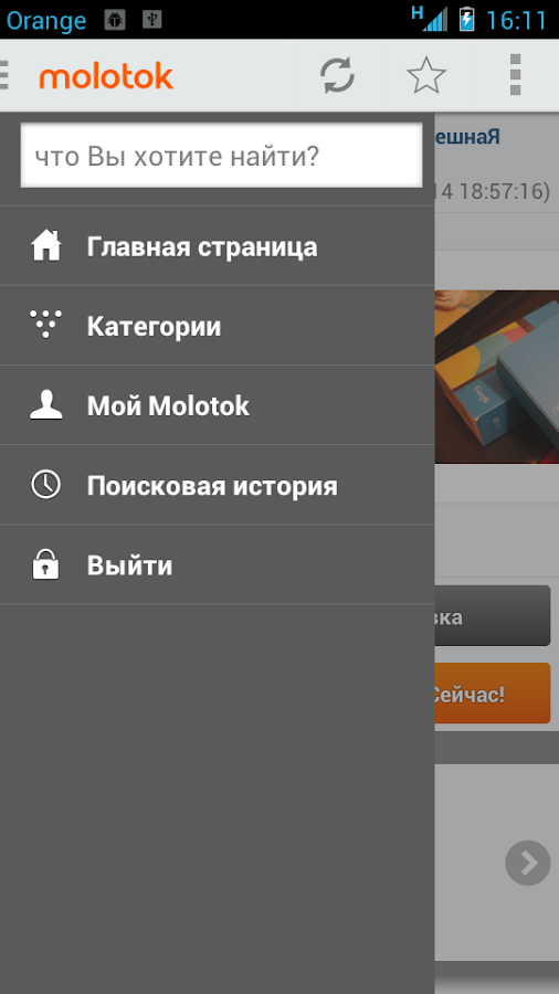 Molotok.ru - screenshot