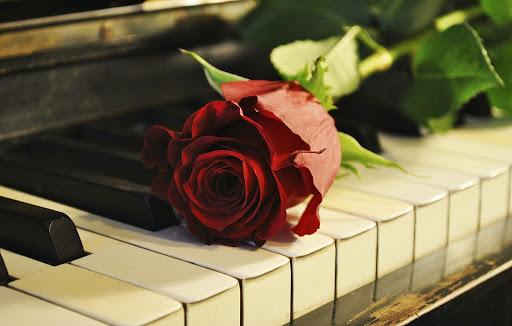 피아노 배경 화면