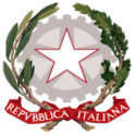 Constitución italiana icon