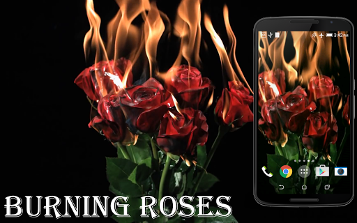 Burning Roses Live Wallpaper