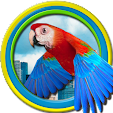 Flappy Parr.. file APK for Gaming PC/PS3/PS4 Smart TV