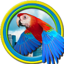Flappy Parrot file APK Free for PC, smart TV Download