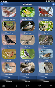 Bird Song Id USA Automatic Recognition songs calls Screenshot