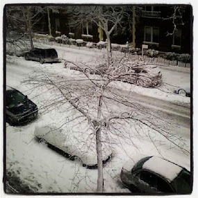 2009: Snow Storm -- Queens, NY by Angela Theresa Egic - Instagram & Mobile Other ( queens, cars, snow, nyc, storm,  )