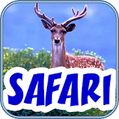 Safari Scrapbook