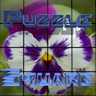 PuzzleSquare icon
