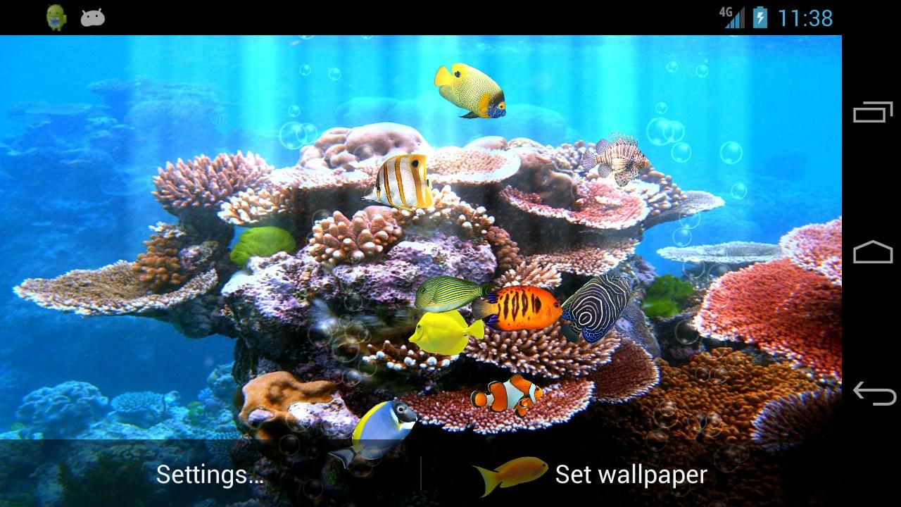 Fish Aquarium - Fish aquarium free screenshot