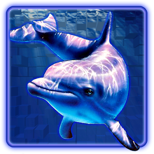 dolphin pearls deluxe download