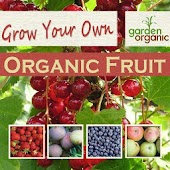 Growing Your Own Organic Fruit