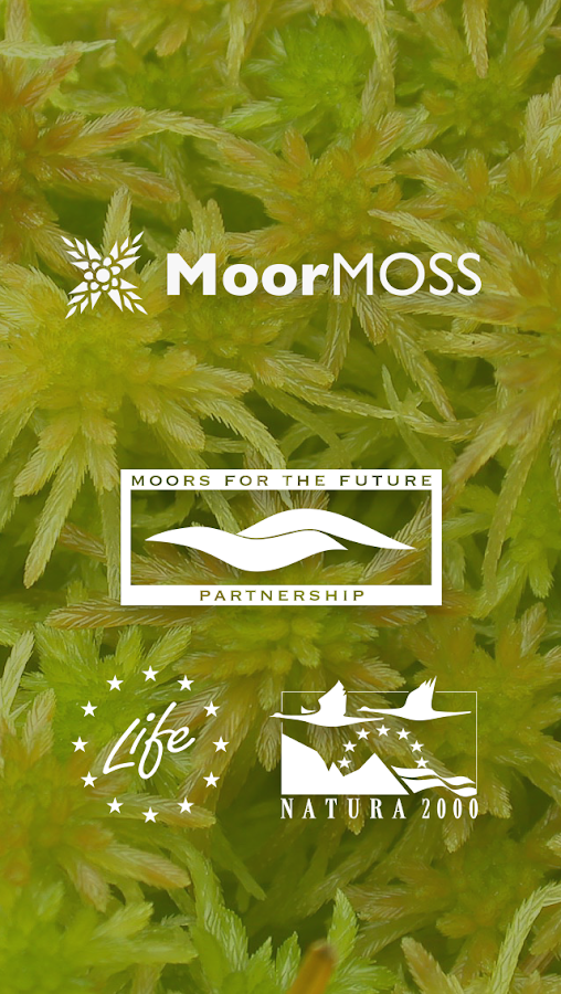 MoorMOSS- screenshot