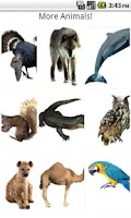 Screenshot of Real Animal Sounds For Kids