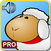 Animals Sounds Cards PRO
