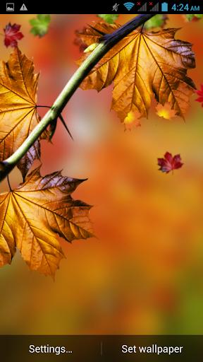 Leaf Animation LWP
