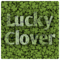 Find Lucky Clover logo