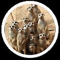 Desert Animals Live Wallpaper icon