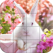 Puzzle - Cute bunnies