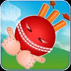 Crazy Cricket icon