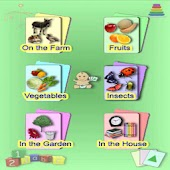 Learning Baby Flashcards Set2