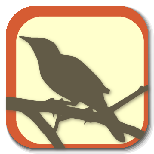 BirdyQuiz LOGO-APP點子