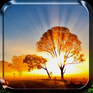 Sunrise Live Wallpaper