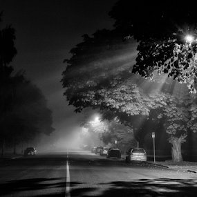 The long road by Doug Clement - Black & White Street & Candid ( scary, foggy, fog, dark, night )
