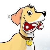 Pies i jego odbicie