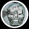 Crystal Skull Live Wallpaper icon