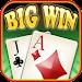 Big Win Blackjack™ Icon