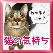 猫の気持ち「わかるかニャ?」ねこのきもち大百科!