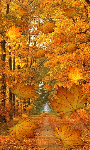 Fall Live Wallpaper 1.0.4 screenshots 8