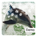Dolphin Jigsaw Puzzles Demo icon