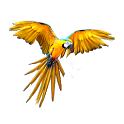 Parrot Sounds & Ringtones icon