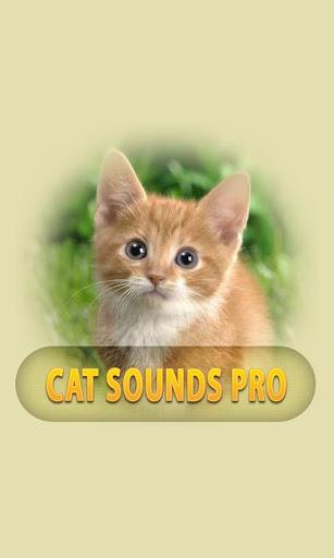 貓的聲音專業版